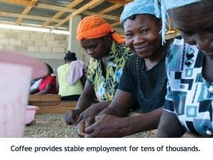 coffee agriculture Haiti thousands of jobs