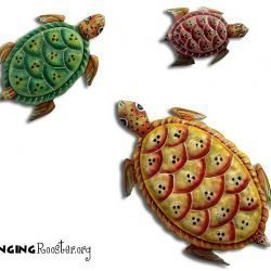 Trio of beautifully painted Haiti turtles