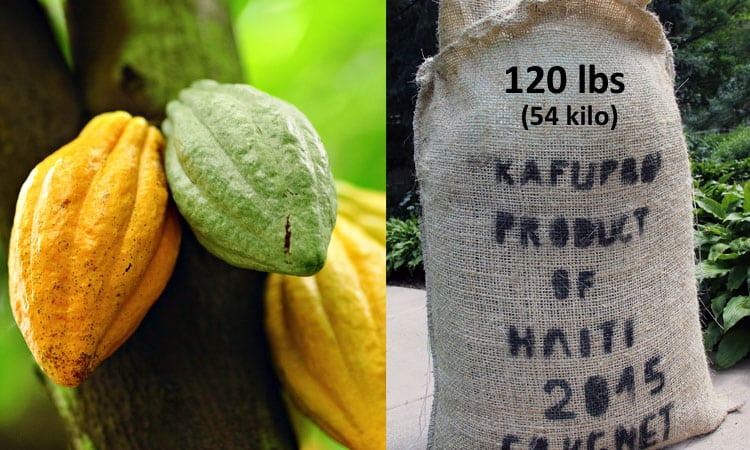 Order a Sample or a Sack of Haitian cacao
