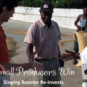 Haitian cacao farmers, Singing Rooster