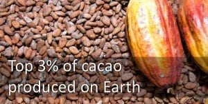 best cacao haiti bean to bar