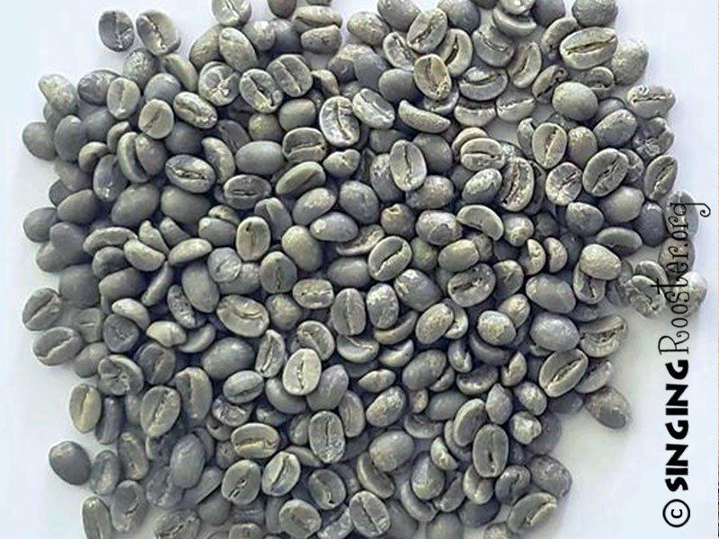 buy green haitian coffee