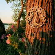 curly tree outdoors