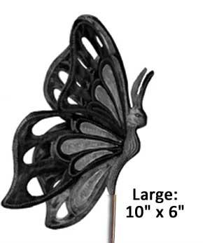 fmsc-butterfly