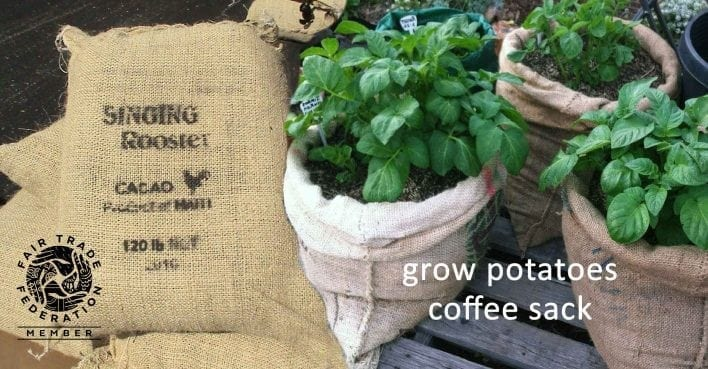recycle coffee sisal jute sacks