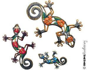 hibiscus geckos