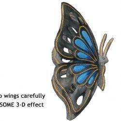 lg blue butterfly haiti