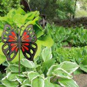 orange yellow butterfly garden stake, Haiti