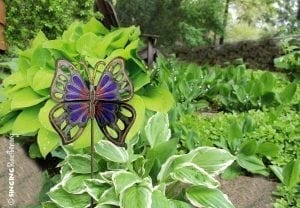purple orange butterfly garden stake, Haiti